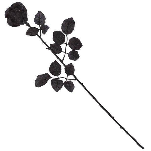 Sort langstilket rose, 58 cm