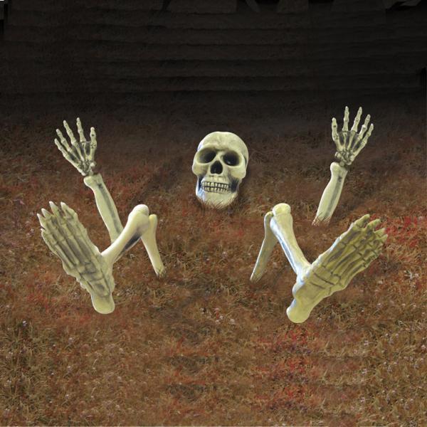 Skelet til haven 10 Dele